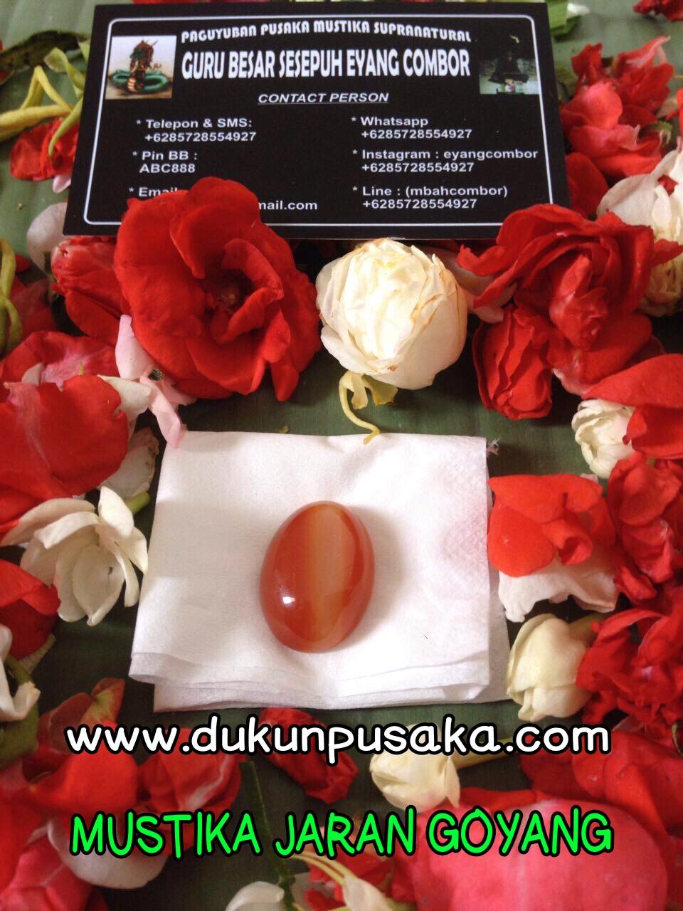 Mustika jaran goyang dukun sakti dimaharkan mustika jaran goyang stopboris Image collections